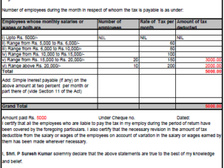 Professional Tax Form 5 Excel Format