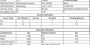 Simple Salary Slip Format For Small Organisation