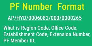 PF Number Format