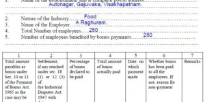 How to Fill Bonus Form D
