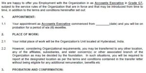 Private Company Appointment Letter Format in word