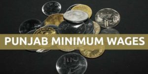 Punjab Minimum Wages Notification
