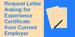 Request Letter Asking for Experience Certificate from Current Employer