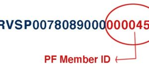 Find PF Member ID With PF Number