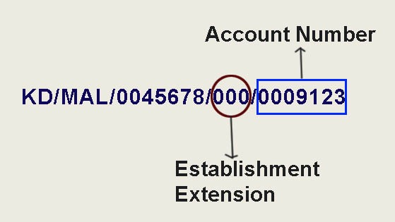 establishment id extension and account number in PF