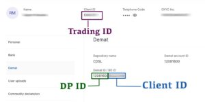 What is Client ID, DP ID, and Trading ID in Zerodha