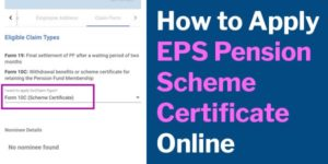 How to apply EPS pension scheme certificate online