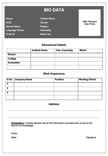 Simple job bio data format