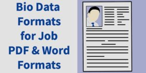 bio data formats for job pdf and word formats