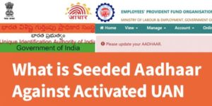 seeded aadhaar against activated uan is mandatory for online claim submission in epfo
