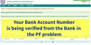 Your bank account number is being verified from the Bank. After successful verification from bank, it will be seeded against your UAN