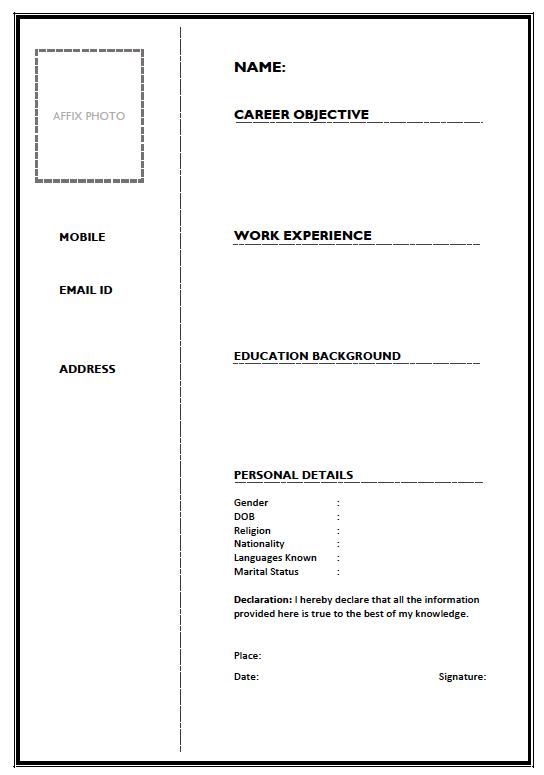 Bio data form for job interview