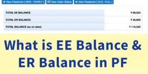 ee balance er balance in pf