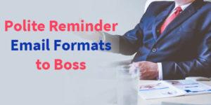Polite & Gentle Reminder Emails to Boss Samples