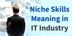Niche Skills Meaning in IT industry